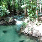 emerald pool - klong tom, krabi